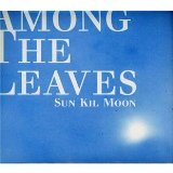 Sun Kil Moon Lyrics Among The Leaves