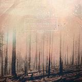 Red Forest Lyrics If These Trees Could Talk