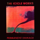 Permanent Damage Lyrics The Icicle Works