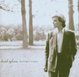 Brilliant Trees Lyrics David Sylvian