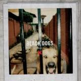Black Dogs EP Lyrics Boys Night Out
