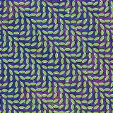 Miscellaneous Lyrics Animal Collective