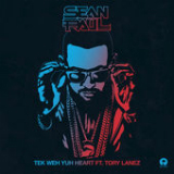 Tek Weh Yuh Heart (Single) Lyrics Sean Paul