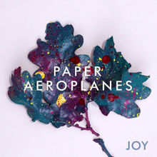 Palm of Your Hand Lyrics Paper Aeroplanes