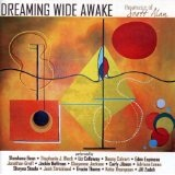 Dreaming Wide Awake Lyrics Scott Alan