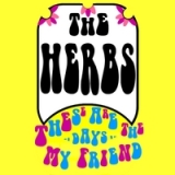 These Are the Days My Friend Lyrics The Herbs