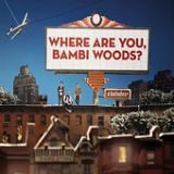Where Are You, Bambi Woods? Lyrics A Balladeer