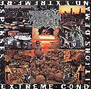 Extreme Conditions Demand Extreme Responses Lyrics Brutal Truth