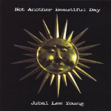 Not Another Beautiful Day Lyrics Jubal Lee Young
