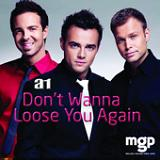 Don't Wanna Loose You Again (Single) Lyrics A1