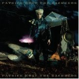 The Bachelor Lyrics Patrick Wolf