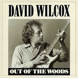 Out Of The Woods Lyrics David Wilcox