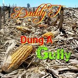 Dung A Gully Lyrics Daddy T