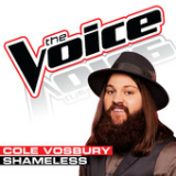 Shameless (The Voice Performance) [Single] Lyrics Cole Vosbury