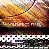 Wildlife Control Lyrics Wildlife Control