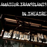In Theatre Lyrics Amateur Transplants
