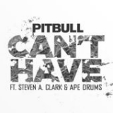 Can't Have (Single) Lyrics Pitbull