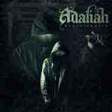 Shedding Skin Lyrics Adaliah