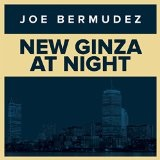 New Ginza At Night Lyrics Joe Bermudez