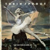 The Universe and Me Lyrics Tobin Sprout