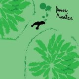 Danse Manatee Lyrics Animal Collective