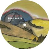 Black Beauty Remixes Lyrics Metope