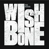 WishBone Lyrics Paul Reddick