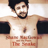 The Snake Lyrics Shane Macgowan And The Popes