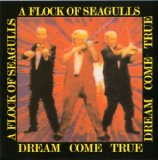 Dream Come True Lyrics Flock Of Seagulls