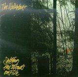 Setting The Woods On Fire Lyrics The Walkabouts