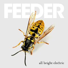 All Bright Electric Lyrics Feeder