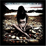 What We Reflect Lyrics Scars Of Life