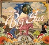 Big Sur Lyrics Bill Frisell