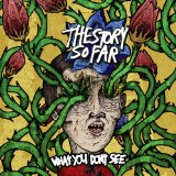 What You Don't See Lyrics The Story So Far
