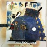 Flags Of The Old Regime Lyrics Peter Doherty