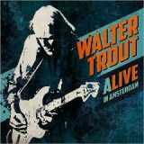 Chicago Lyrics Walter Trout