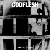 Decline & Fall Lyrics Godflesh