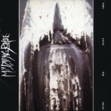 Turn Loose The Swans Lyrics My Dying Bride
