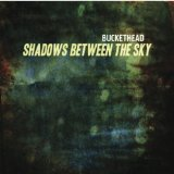 Shadows Between The Sky Lyrics Buckethead