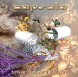 Synthesis Of Reality Lyrics Capsula
