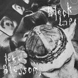 Cowboy Knights Lyrics Black Lips and Icky Blossoms