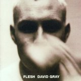 Flesh Lyrics David Gray