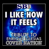 I Like How It Feels (Single) Lyrics Enrique Iglesias