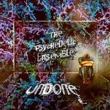Undone (Single) Lyrics The Psychedelic Ensemble