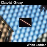 White Ladder Lyrics David Gray