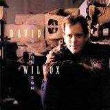 Big Horizon Lyrics David Wilcox