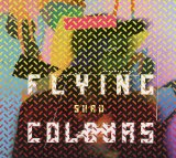 Flying Colours Lyrics Shad