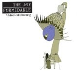 A Balloon Called Moaning Lyrics The Joy Formidable