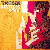 Restless Soul Lyrics Tingsek