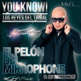 Los Reyes Del Tribal Lyrics El Pelon Del Mikrophone